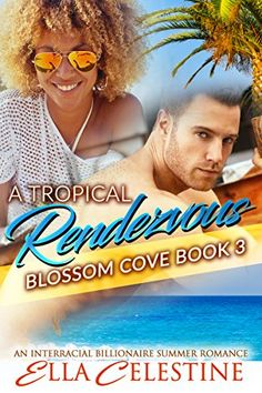 A Tropical Rendezvous: A BWWM Interracial Bad Boy Billion…