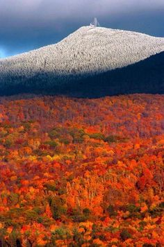 Killington Vermont - great mountain to ski! We loved Vermont last year!