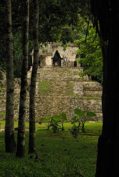 Palenque :Deservedly one of the top destinations of Chiapas