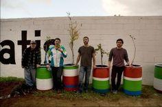 Fallen Fruit, Fruta Urbana, Tijuana Accion Fruta Urbana / Urban Fruit Action Tijuana, outdoor public installation, 2010