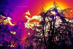 Thermal Energy by ~smileyrose92 on deviantART
