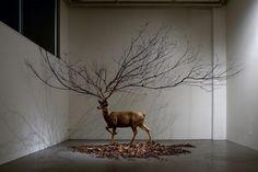 Installationen von Myeongbeom Kim | iGNANT.de