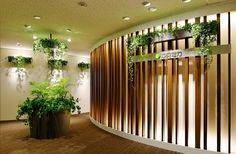 green entrance -office designers-