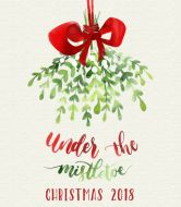 Holiday Wine Label - Under the Mistletoe Personalized Wine Bottles, Personalized Labels, Custom Wine Labels, Wine Bottle Labels, Make Your Own Wine, Under The Mistletoe, Photo Logo, Christmas Ornaments, Holiday Decor