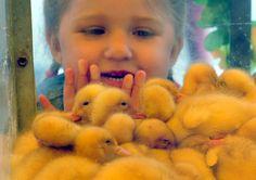 Very Beautiful and Cute Kids : Shchomyslitsa Belarus
