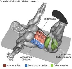 ABDOMINALS -  ALTERNATE HEEL TOUCHERS