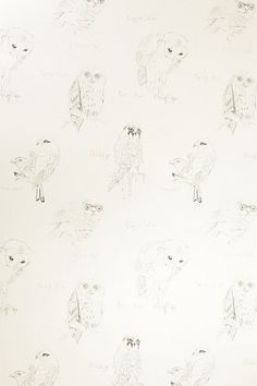 Little Owl Wallpaper. Insanely expensive =(