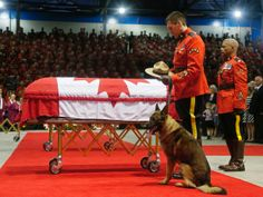 A Royal Canadian Mounted Police officer with the hat and dog of K-9 officer David Ross, who was killed last week along with two other RCMP o...