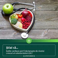 Natur House, Health Fitness, Fruit, Food, Essen, Meals, Fitness, Yemek, Eten