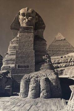 Old Egypt, Egypt Art, Ancient Egyptian Architecture, Kairo, Ancient Egypt History, Sphinx, Desert Design, Cradle Of Civilization, Egyptian Tattoo