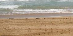 Muere ahogado en playa de Río Grande hombre de nacionalidad rusa...