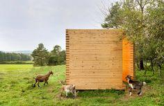 Designer Barns: Some Lucky Goats in Germany Just Got a Cute Modern Barn | Décoration de la maison