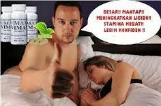 Obat Pembesar Penis | Obat Vimax Original | Jual Vimax Capsul | Hubungi 081315000399: Alasan Jutaan Pria Memilih Vimax