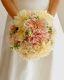 Flowers - cream and blush 'Cafe au Lait' dahlias. Love the detail the dahlias give to this simple bouquet