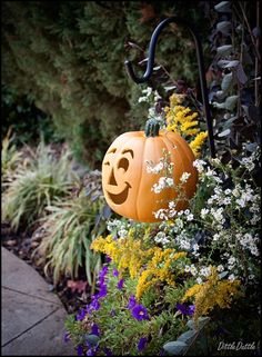 Hang a Jack O' Lantern on your plant hook for Fall!