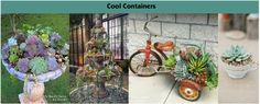 Cool Containers