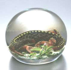 pantin paperweight | Pantin Paperweights: Snakes in the Glass