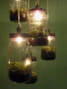 terrarium light fixture (I think those bulbs will kill that moss pretty quickly - swap for LEDs!)