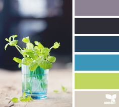 cut tones - design seeds