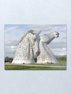 """the Kelpies , Helix Park , Grangemouth Metal Print by goldyart Round Corner, Print Design, Lion Sculpture, David, Statue, Park, Wall Art, Metal, Artist"