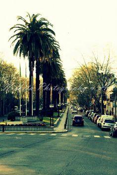 Nickita Photography & Art Fotografía | Photography Paseo por el Tigre more  https://www.facebook.com/media/set/?set=a.428678167256979.1073741846.414016238723172&type=3&uploaded=9