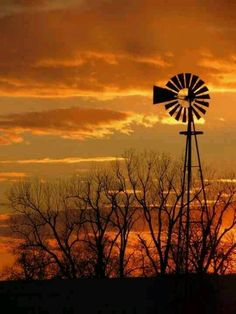 Amish Farming ~ Sarah's Country Kitchen ~ Tall Windmill in a beautiful sun set. Cool Pictures, Beautiful Pictures, Barn Pictures, The Animals, Old Windmills, Fotografia Macro, Country Scenes, Le Far West, Old Barns