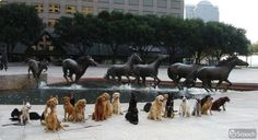 Mustangs at Las Colinas and friends...