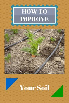 Discover all the benefits of making your compost. Learn how easy it is to make compost and increase the health of your soil. Organic Fertilizer, Organic Gardening, Gardening Tips, Garden Fertilizers, Urban Gardening, Organic Farming, Vegetable Garden Soil, Vegetable Garden Planning, Compost Soil