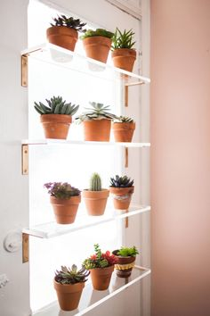 15 beautiful window plants ideas that will freshen up your house Window Shelf For Plants, Kitchen Window Shelves, Home Decor Shelves, Plant Shelves, Kitchen Windows, Window Ledge, Shelf Over Window, Bedroom Shelves, Door Shelves