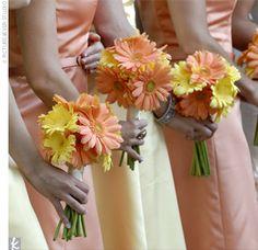 Four yellow an four orange gerbera daisies... bride had same with white spray roses and freesia.