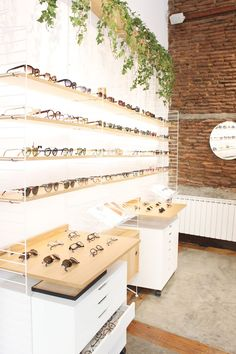Light and bright optical store with shelving for glasses frames and sunglasses.