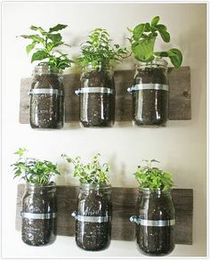 Un mur végétal avec des bocaux en verre - Marie Claire Maison