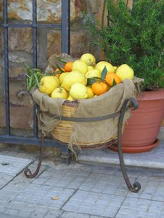 Buffet table fresh fruit basket - maybe a smaller version on the table