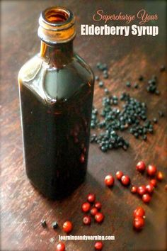 Supercharge Your Elderberry Syrup with foraged plants to boost immune building properties.   LearningAndYearning