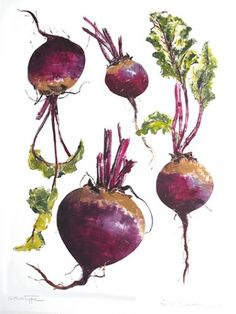 Unique, hand made individual monotype prints by Rosie Sanders Botanical Drawings, Botanical Art, Botanical Illustration, Watercolor Food, Floral Watercolor, Watercolor Paintings, Vegetable Painting, Scientific Drawing, Farm Shop