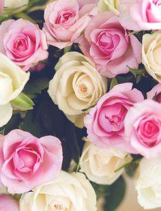 Wedding roses by FesenkoMaria