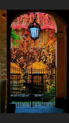 Beautiful and colorful and a gate too.