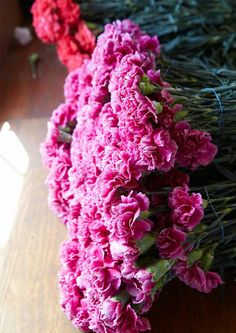 UBLOOM   IS THIS THE END OF CALIFORNIA GROWN CARNATIONS?