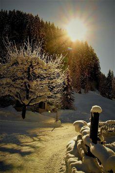 Magic of snow...❄