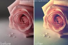 20+ Photoshop Actions for Photo Editing