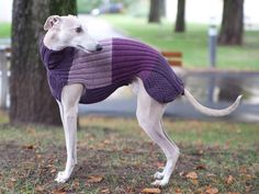 Long Whippet Sweater / Lilac & Violet Tones