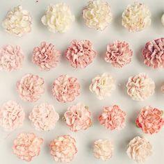 #가정의달 #5월 #어버이날 #스승의날 선물 #올리케이크 #카네이션케이크  #buttercreamflowercake #flowercake #flowercupcake #koreanstylecake #ollicake #olliclass #olligram #carnation #blossom #bouquet #wreath #weddingcake #partycake #버터크림플라워케이크 #올리클래스 #케익스타그램 #꽃스타그램 #동편마을 #어버이날선물 #스승의날선물 #since2008  www.ollicake.com ollicake@naver.com