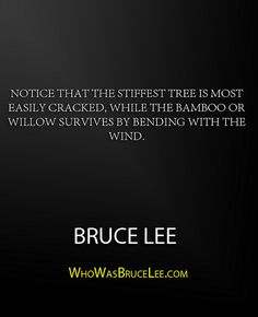 """Notice that the stiffest tree is most easily cracked, while the bamboo or willow survives by bending with the wind."" - Bruce Lee"