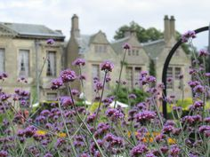 more beautiful color from the gardens at Coombe Abbey