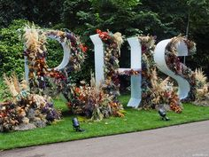 Chelsea Flower Show, Autumn Garden, Cut Flowers, Floral Arrangements, Things To Do, Christmas Tree, Holiday Decor, Plants, Things To Make