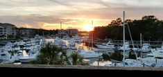 Harbourside-Condos-Shelter-Cove-Hilton-Head-Island-Balcony Family Pool, Beach Vacation Rentals, Hilton Head Island, Condos, Balcony, Shelter, New York Skyline, Explore, Travel