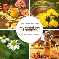 Sběr, sušení a skladování bylin Planting Vegetables, Good Advice, Korn, The Cure, Pumpkin, Herbs, Table Decorations, Health, Plants