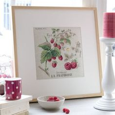 v. enginger - framboise (raspberries)