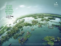 The backwater life in Kerala has multiple components that could fascinate many..