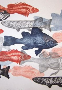 Clare Whitney studied Fine Art at The Royal Melbourne Institute of Technology, R.T, where she majored in painting. Fish Art, Fish Fish, 2d Art, Teaching Art, Art Boards, Illustration Art, Illustrations, Art Inspo, Painting & Drawing